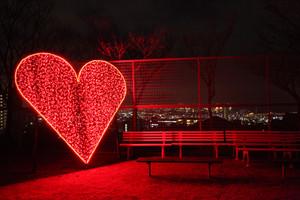 Openheart3