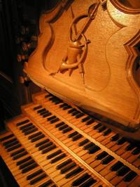 Organ201
