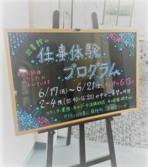 Shigototaiken201906